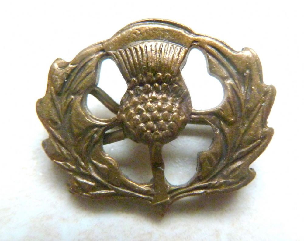Vintage Dainty Brass Scottish Thistle Flower Brooch